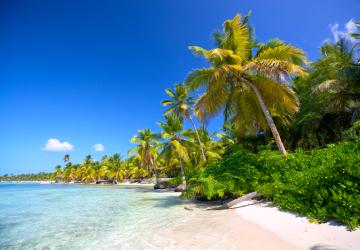 Navette plage en taxi pour la Guadeloupe